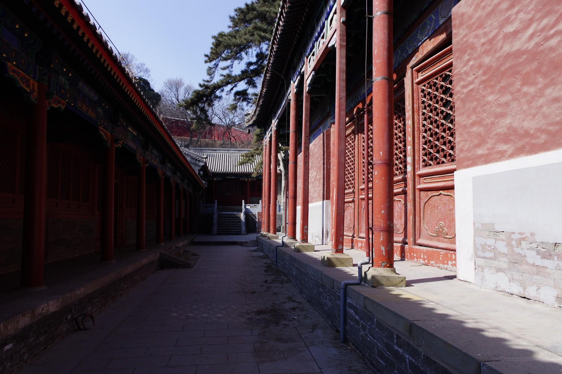 左が南側の羅漢堂 右が戒台殿