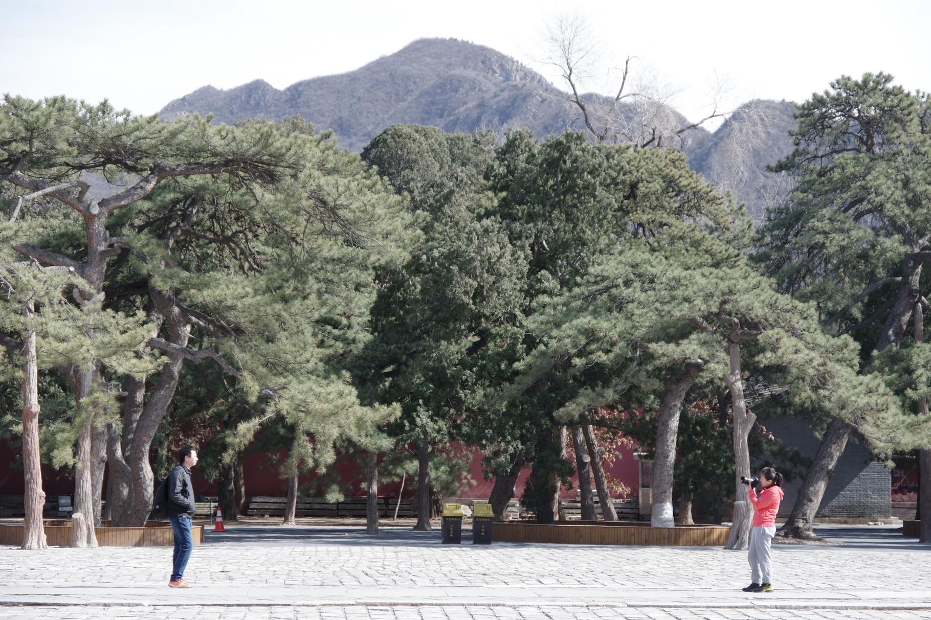 「祾恩殿」前の中庭の東側
