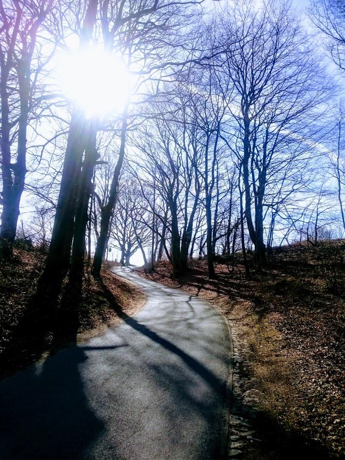 Hamburg; Rennrad; Norwid; Harburger Berge; Rosengarten;