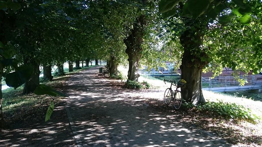 Rennrad, Norwid, Hamburg, Radtour, Bozenburg