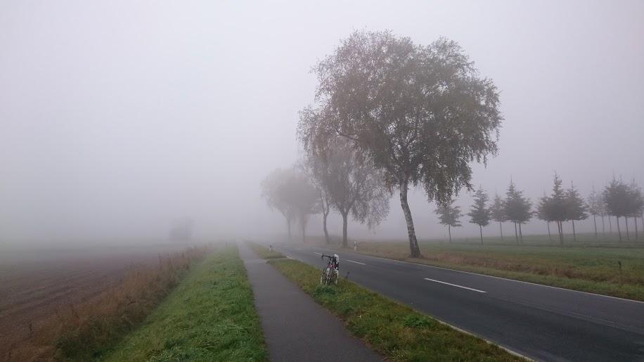 Norwid, Rennrad, Radtour, Harburger Berge, Hamburg
