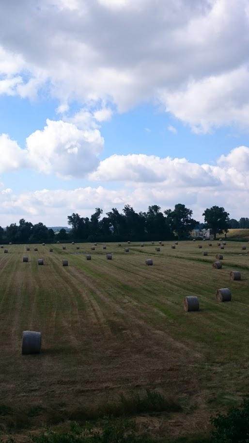Land-Art. Christo lässt grüßen.