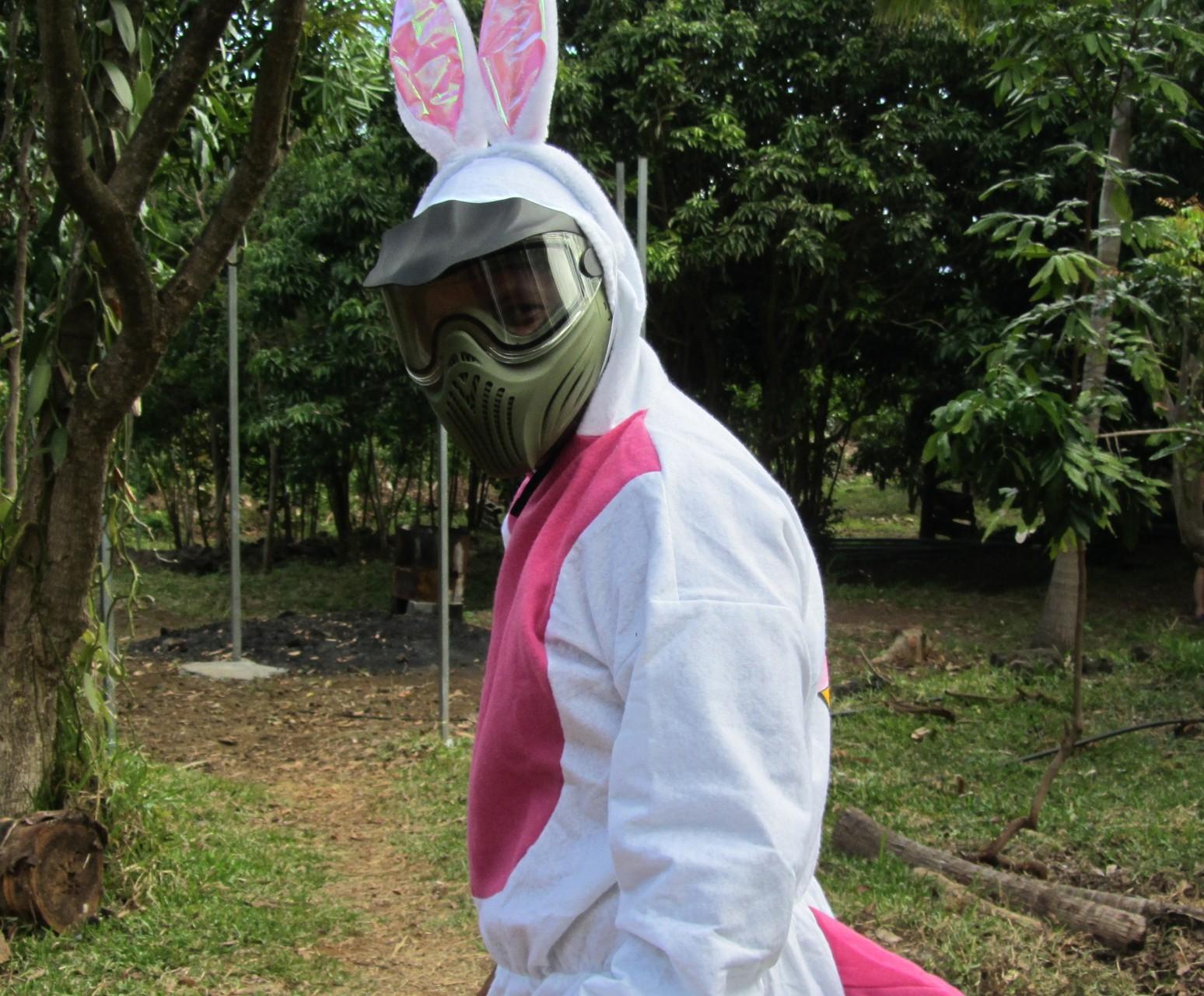 la chasse au lapin est ouverte