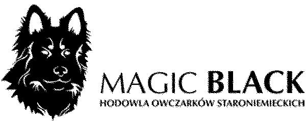 Marzena mit ihrem tollen Rudel ( http://www.magicblack.pl )