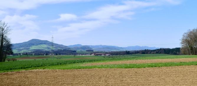 Auf dem Plateau von Wenslingen mit link dem Wiesenberg