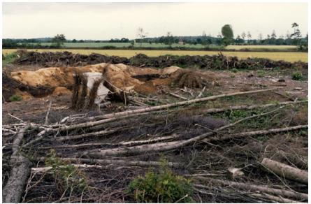 Abb. 2 Grabung Kramer 1980, auf der Suche nach dem karolingischen Spitzgrabenschatten unter schwierigen Bedingungen.