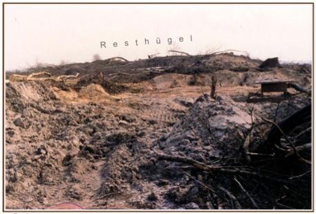 Abb. 1 Situation nach 1979, Baggerspuren in der Nordwestausdehnung vor dem Resthügel, hier ist die archäologische Bodensubstanz bis auf den anstehenden Sandboden völlig zerstört.