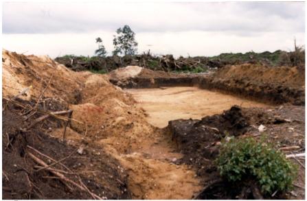 Abb. 3 Archäologische Grabungsfelder sind  weitere  Störungen, sie   hinterlassen sterile Flächen nach der Untersuchung und der Entnahme des Fundmaterials.