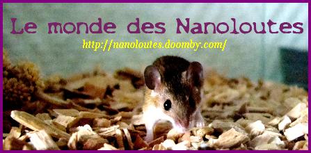 Le monde des Nanoloutes