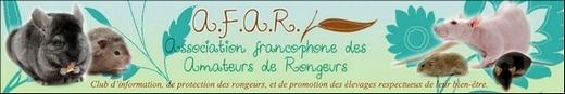 A.F.A.R. ASBL : le nouveau site !