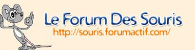 Le Forum Des Souris