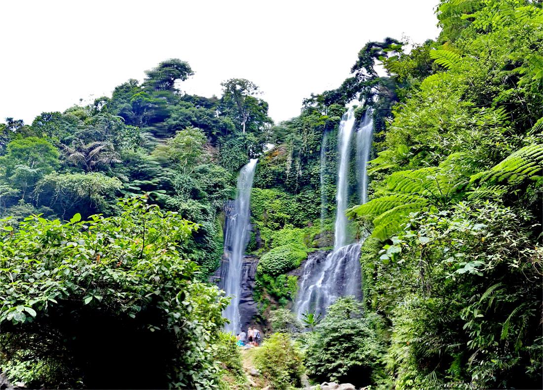 Tempel & Wasserfall Tour Bali