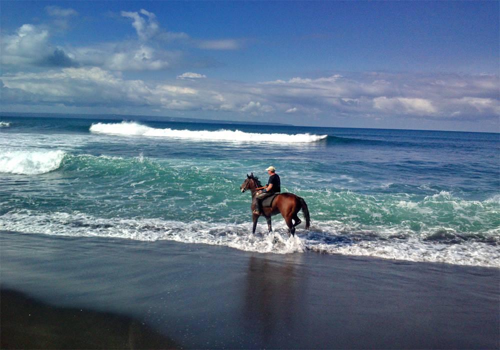 Reiten auf Bali / urlauber-bali.de