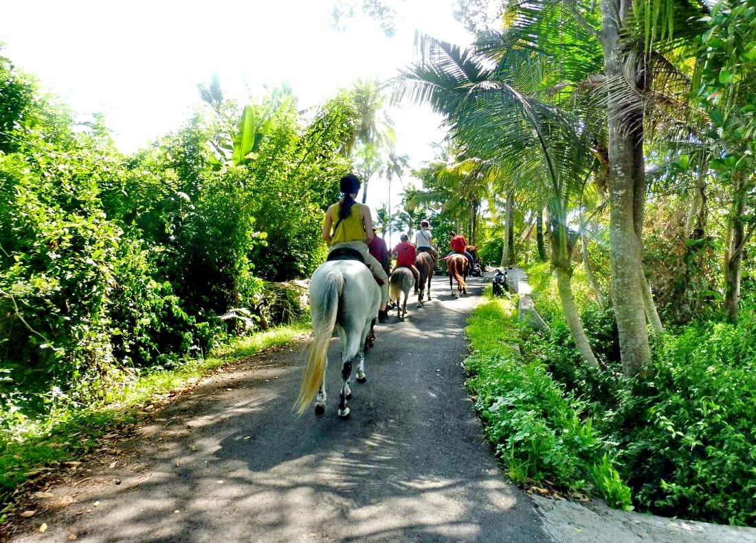 Reiten auf Bali
