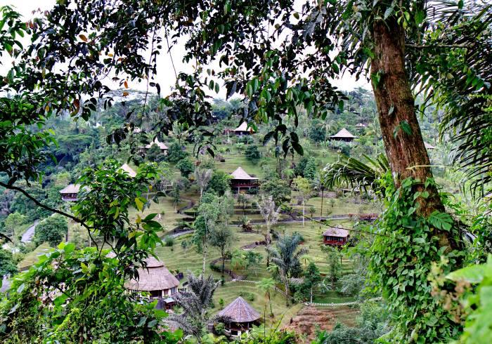 Ubud & Vulkan Tour Bali