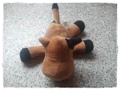 ... ein Geschenk der Beckers-Sisters wurde operiert. Bin froh, dass sie es überlebt hat die Kuh. Nur die Augen und ein Horn fehlt :-).