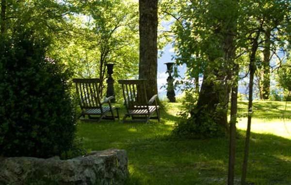 Relax unter Erlen am  See