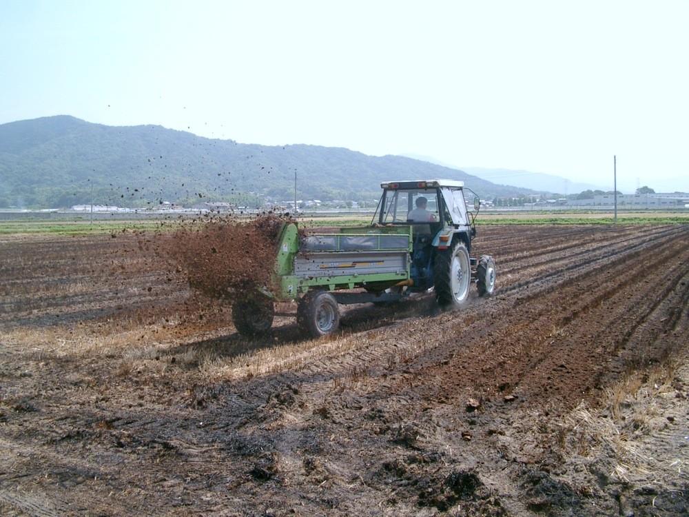 米づくりは土づくりから。堆肥をたっぷり散布。甘いお米の秘訣です。