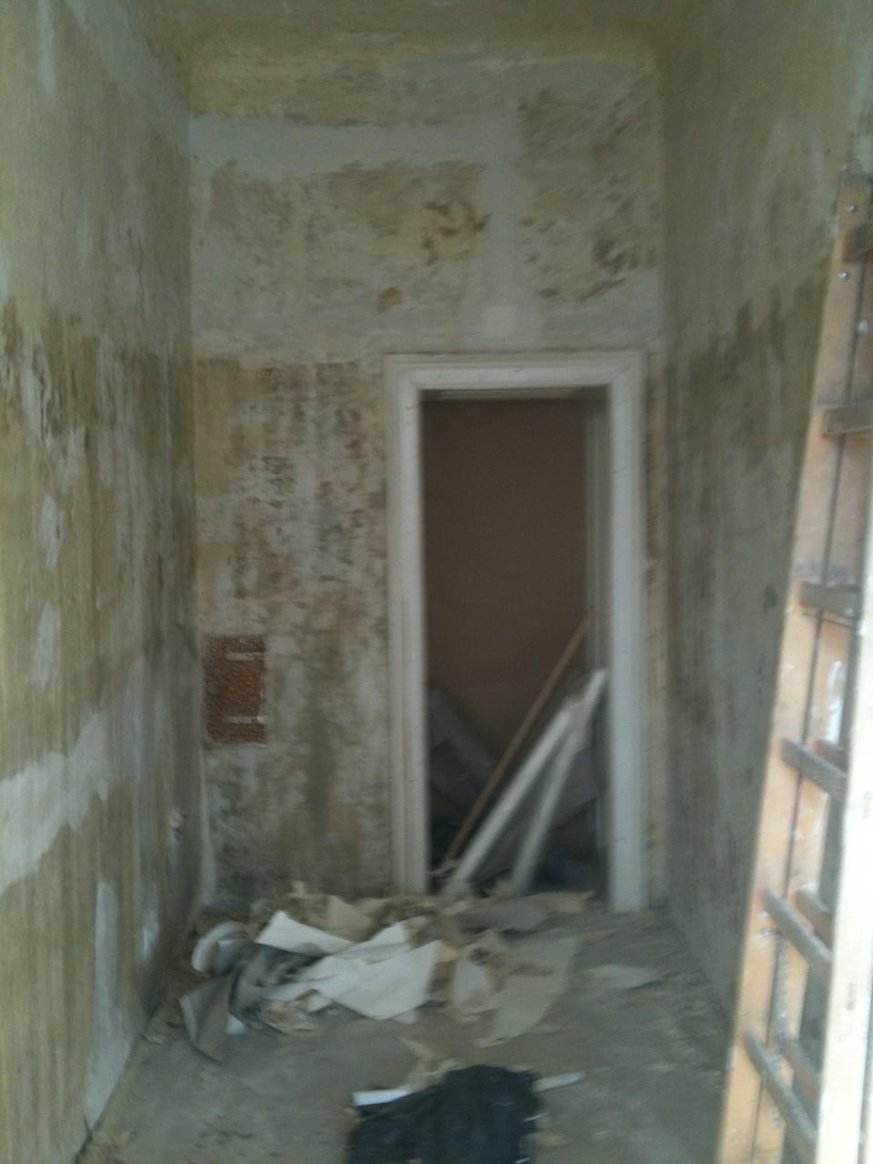 Altbeschichtung entfernen, Wände und Decke spachteln und malen