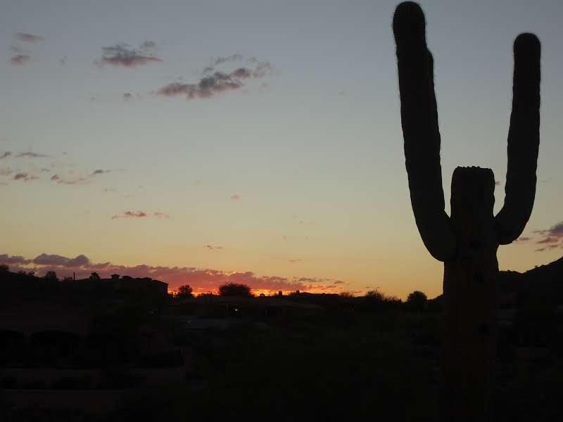 Fountain Hills (Arizona)