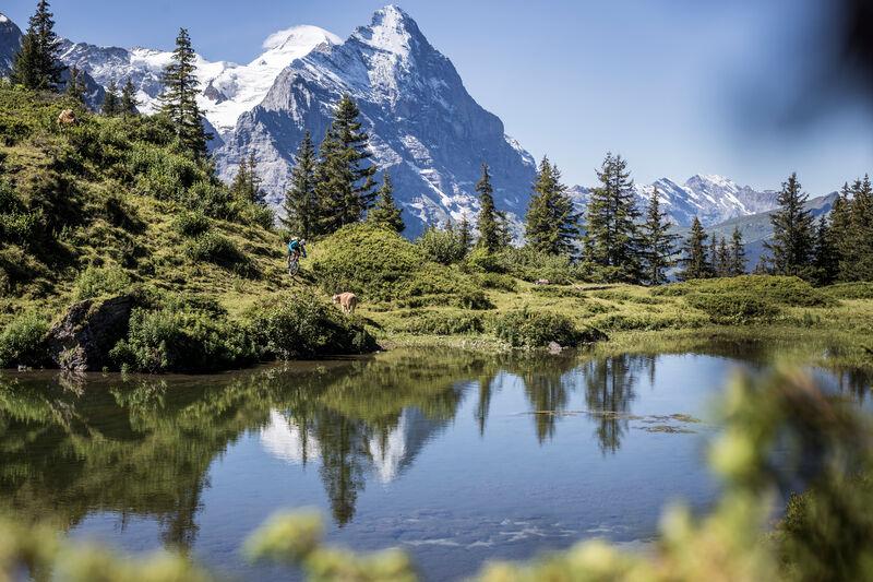 Grindelwald - Grosse Scheidegg