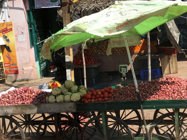 Obst und Gemüse - im indischen Winter lacht das Vegetarierherz
