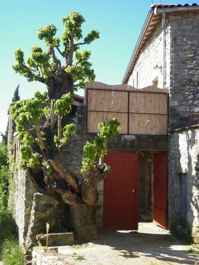 Le portail d'entrée du gîte de Coustillou