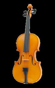 мастеровая скрипка Karl Hofner купить