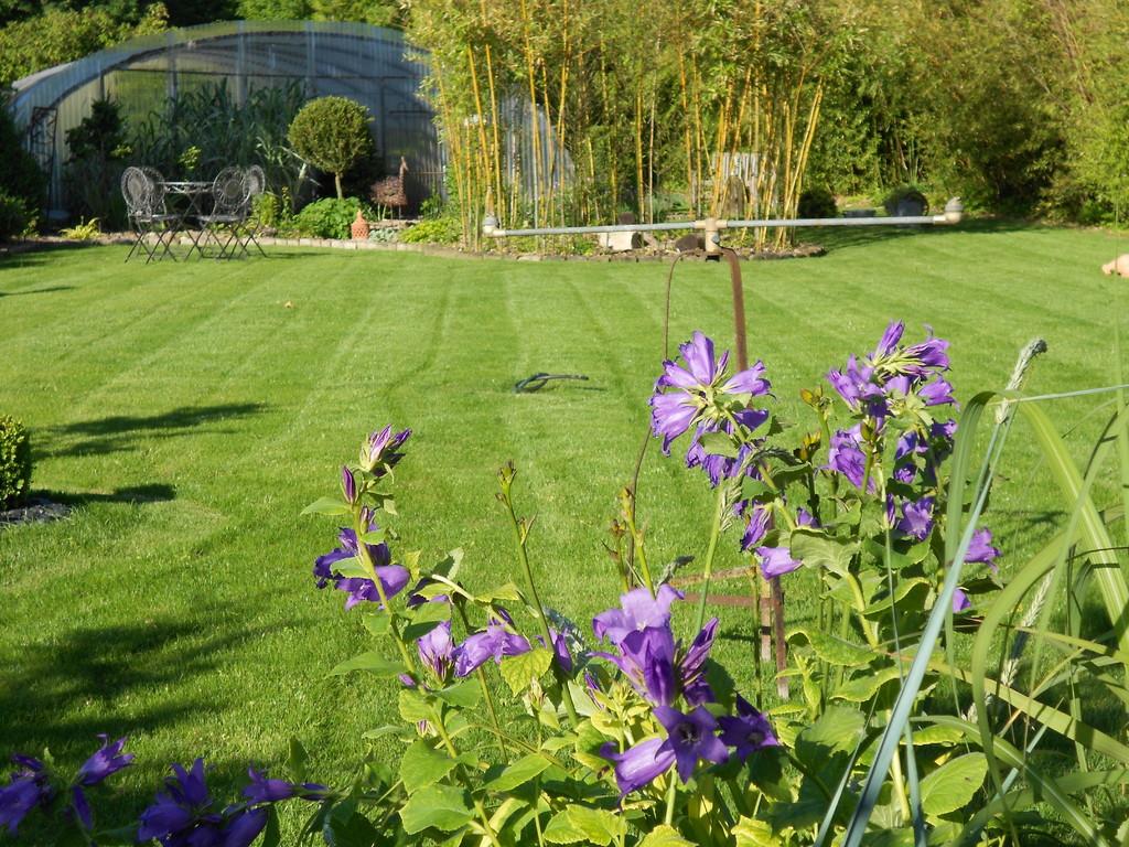 Bienvenue sur le site de la p pini re du jardin du clos a villiers herbisse sp cialiste de la - Jardin du clos des blancs manteaux ...