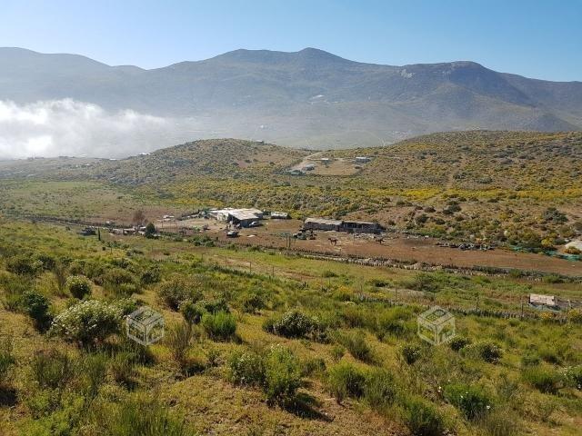 Valle Elqui km 18, 5000 m2, $370 UF