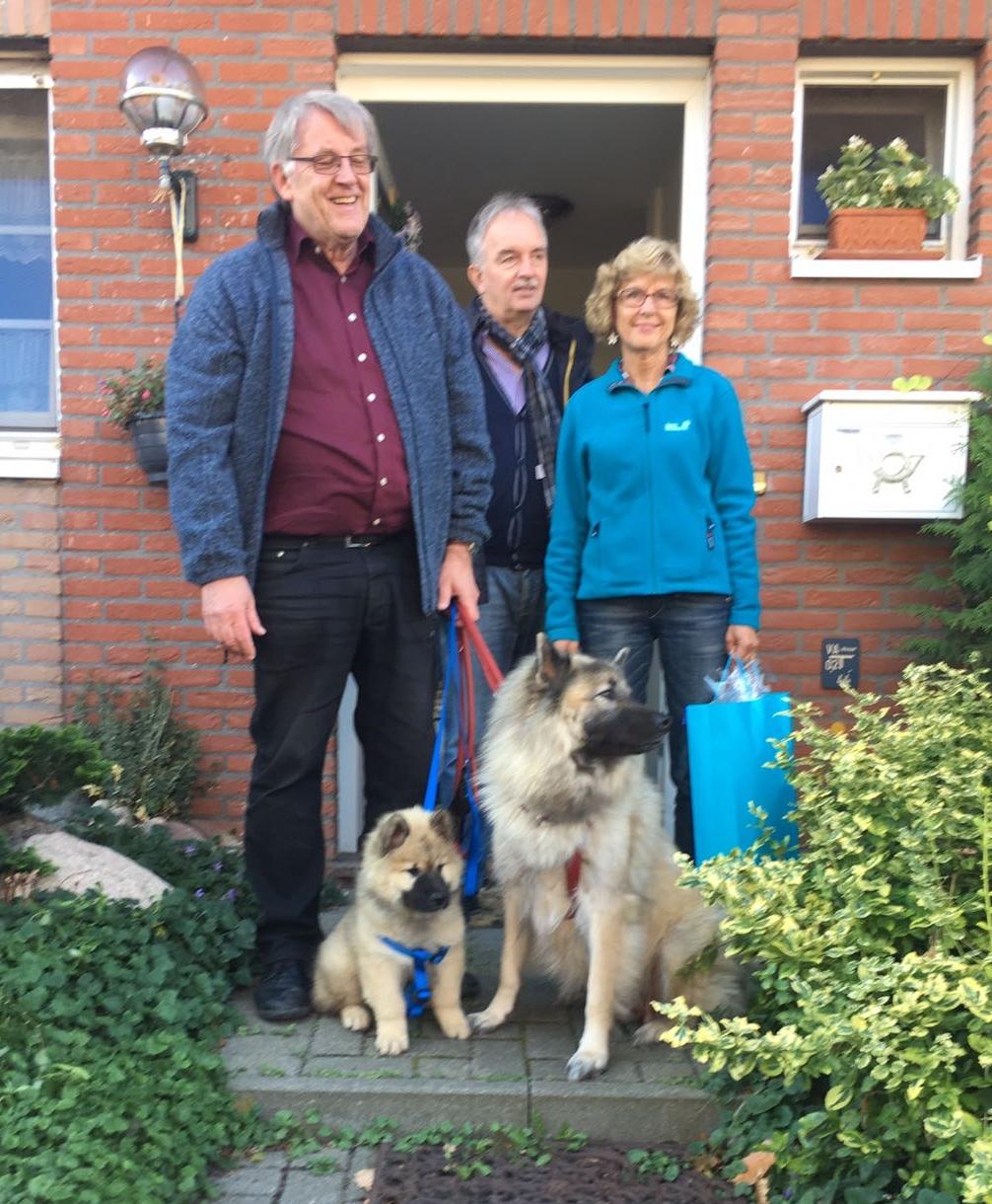 BoBo lebt in Ladenburg und ist so freundlich wie sein Vater