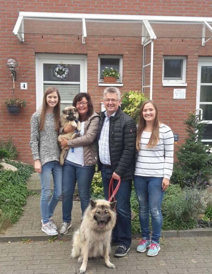Barneby Boy wurde zuerst abgeholt und lebt nun in Helmstadt-Bargen