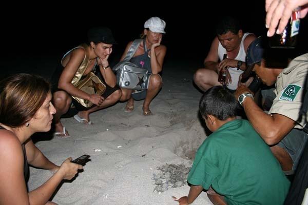 Aqui las comadronas ayudando al parto de las tortuguitas