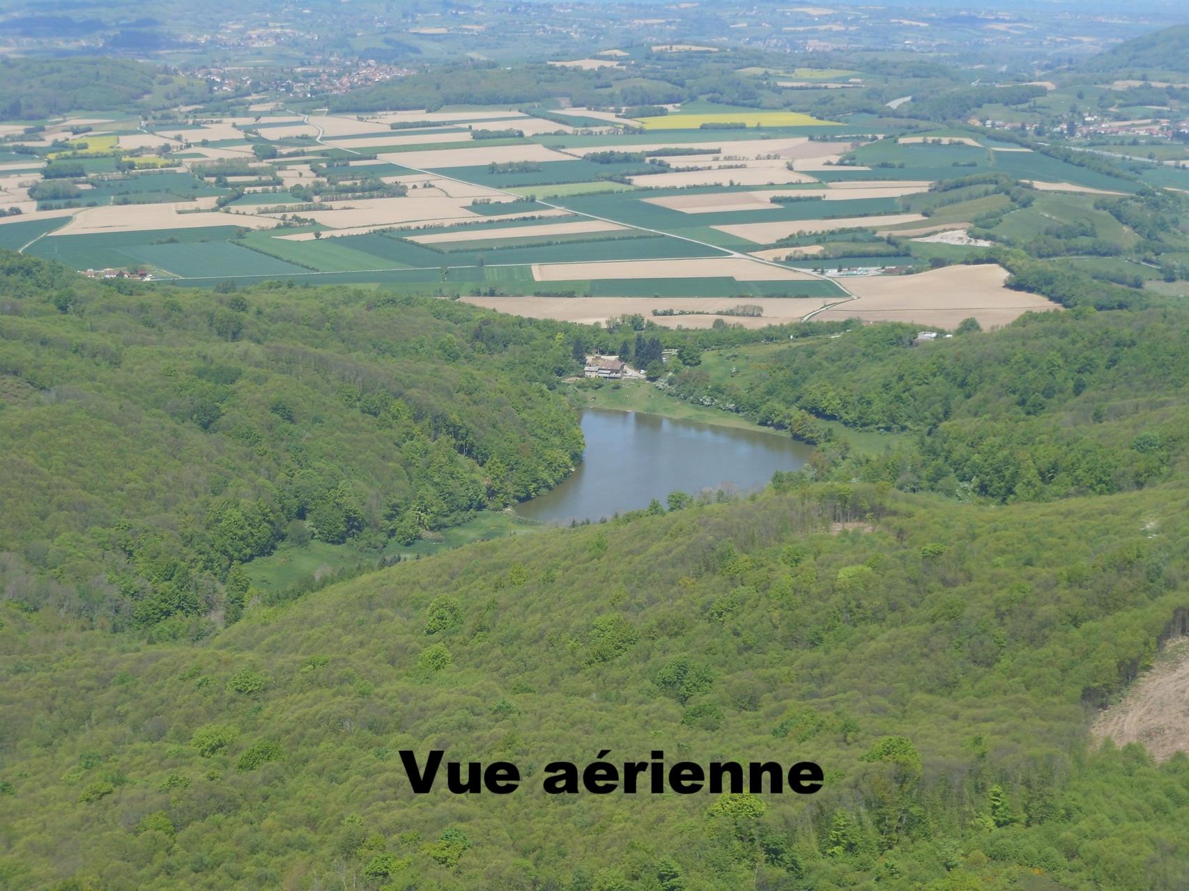 Vue aérienne Grenoble Volitude