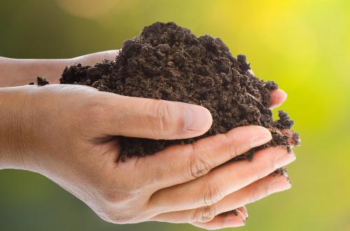 Blumenerde Aussaaterde Pflanzerde Landhandel Schieren