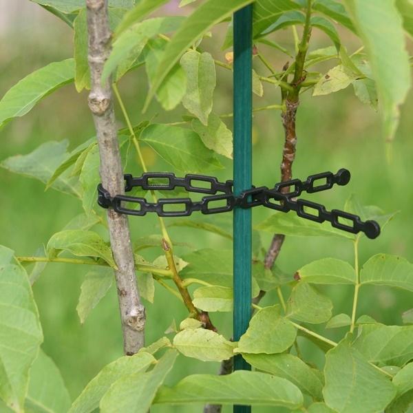 Glasfaserpfahl als Stütze für jungen Walnussbaum - Marke Vinotto®