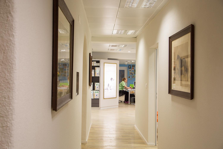 In unseren zwei neu eingerichteten Behandlungszimmern...