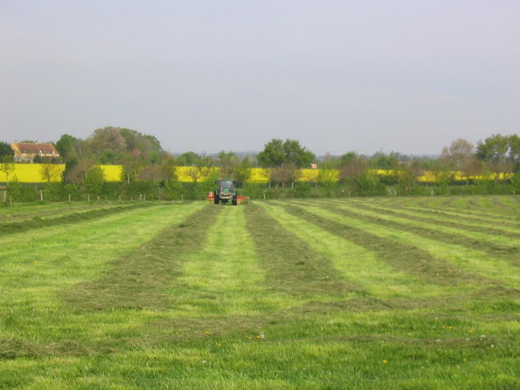 La ferme et le travail des champs