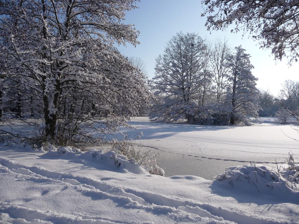 Parc nature de Préaux du Perche sous la neige