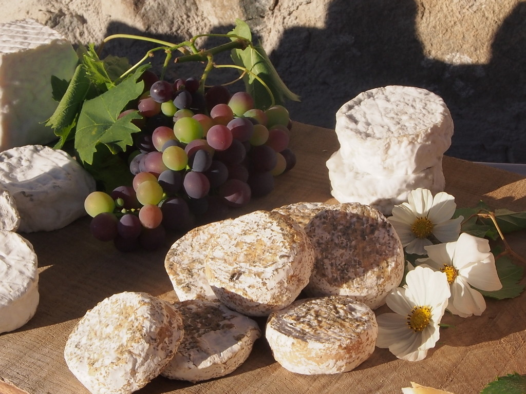 Les fromages de chèvre de Rouze