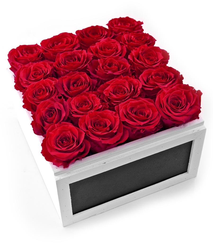 online store rose in the box konservierte rosen online. Black Bedroom Furniture Sets. Home Design Ideas