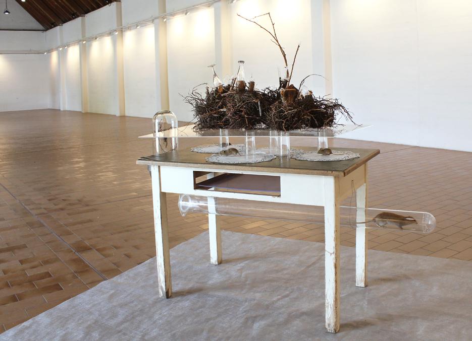 Habitat Erde, 2019, Kunstverein Wesseling