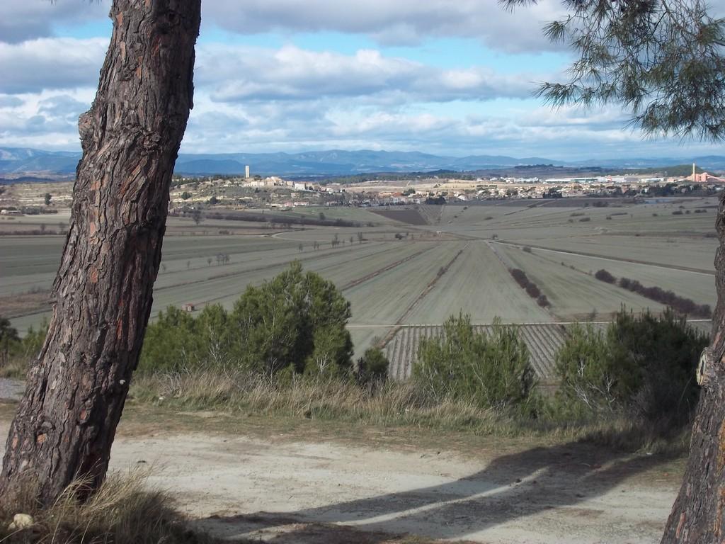 vue de l'oppidum sur l'étang de Montady