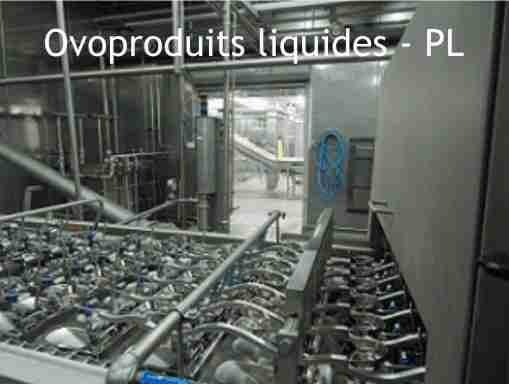 Ovoproduits liquides - PL