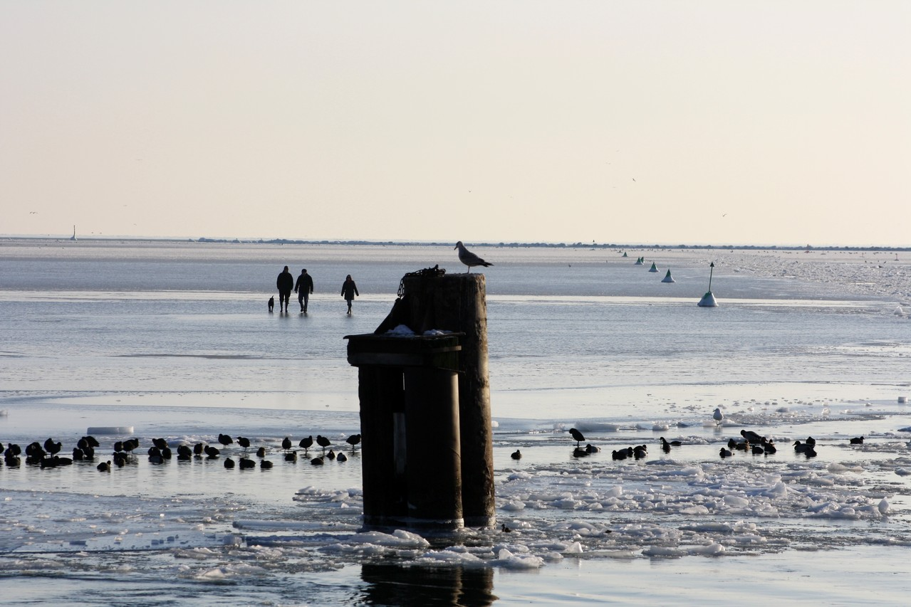 Der zugefrorene Burger Binnensee