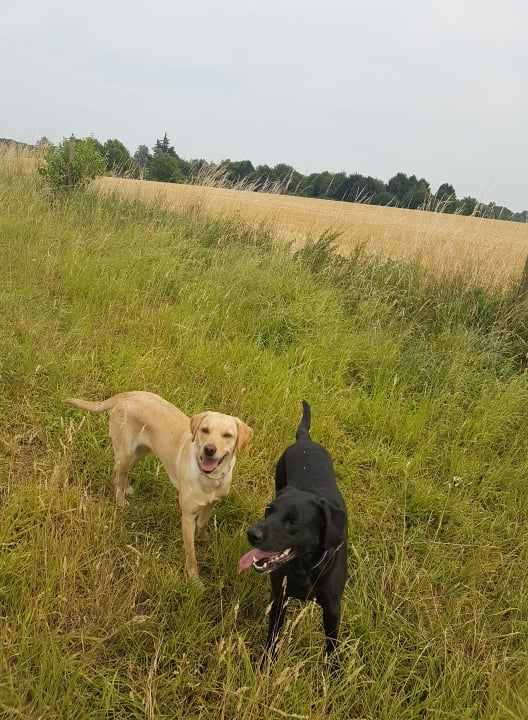 Sage und Zoe am Starcreek Training Ground