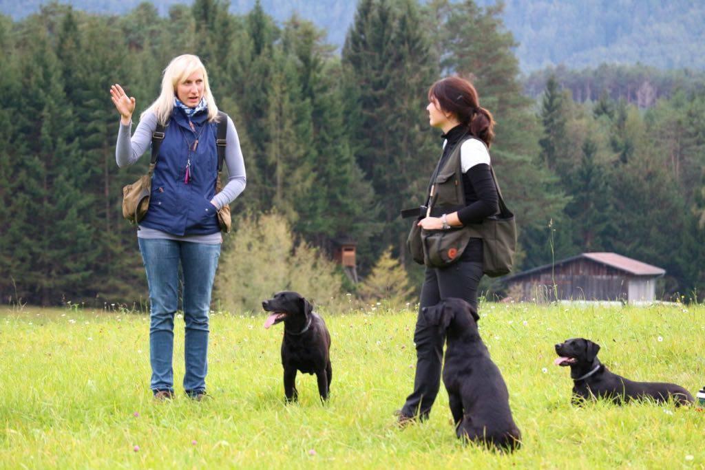 Training mit Yvonne und Dawn