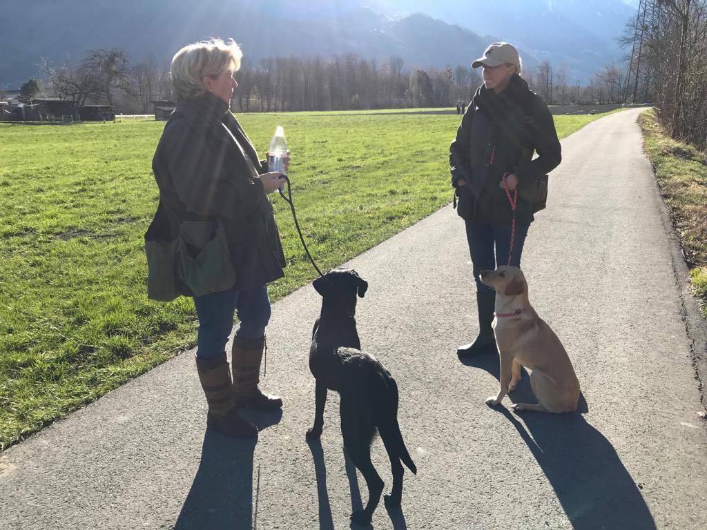 Eddy begleitet seine Halbschwester
