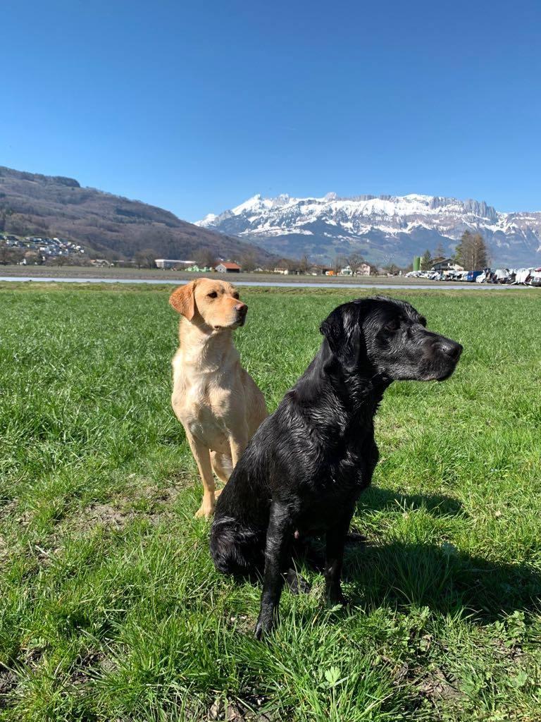 Sage und Zoe in der Schweiz