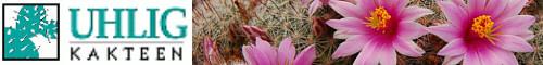 Uhlig-Kakteen-Shop - Pflanzen und Samen, Zubehör, Bücher, Verkauf im Versand und ab Gärtnerei
